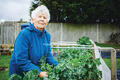 Margaret at Depot Road Allotment